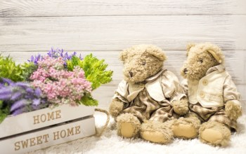 sweet,Любовь,home,wood,цветы,Teddy,couple,мишка