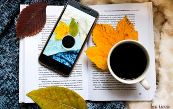 autmn,плед,book,осень,flatlay,phone,coffee,телефон,чашка кофе,книга,smart phone,свитер,cup of coffee,листья,кофе