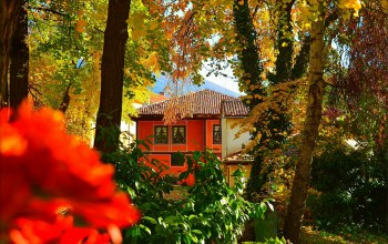 осень,дом,fall,autumn,house