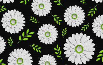 background,цветы,leaves,Floral,чёрный фон, green,colorful,design,Tekstura