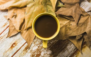 осень,листья,cup,background,leaves,coffee,wood,фон,maple,кофе,чашкa,colorful,autumn,дерево,осенние