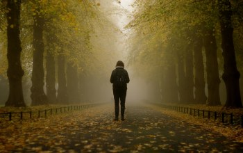 autumn,trees,fog,misty,branches,mist,park,foggy,leaves,girl,path