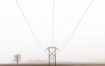 field,power line,foggy,фарм