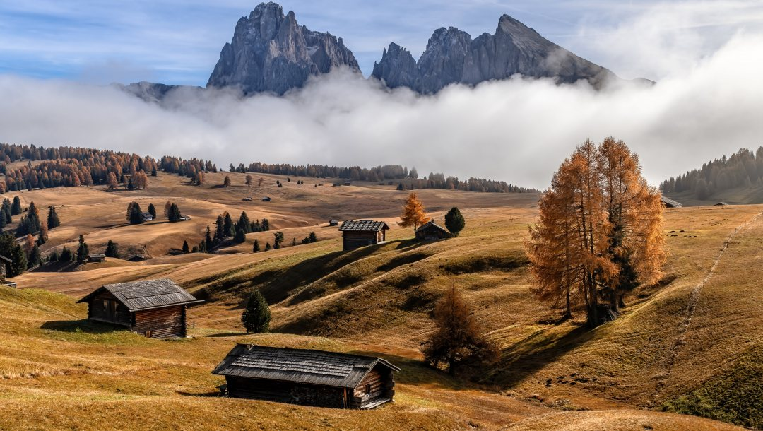 Foggy autumn,Dolomite Alps,природа