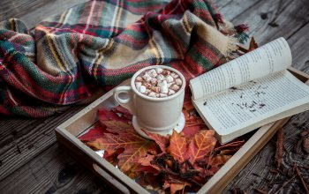 background,plaid,marshmallows,tray,book,blanket,marshmallow,cocoa,Hot chocolate,wood,autumn,hot cocoa,leaves