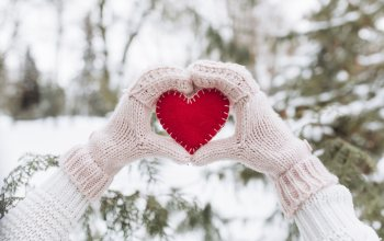елка,heart, зима, снег,valentine,hands,snow,лове,сердце,fir-tree, romantic,любов,winter,Red,варежки