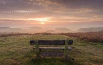 england,forest,Leicestershire,mist,dawn