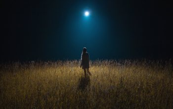 mood,girls,#night,meadow,натуре,field,#moon,girl,Moonlight,wallpaper
