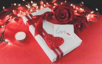 красные розы,hearts,,roses, romantic,gift,Red,valentine