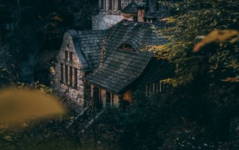 trees,landscapes,home design,forest,branches,house,leaves,bushes,miscellaneous,autumn,old