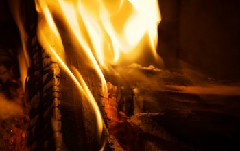 мacro,fire,firewood,flame,closeup,burn