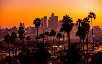 Sunset,buildings,palm trees,los-angeles,california,city,skyscrapers
