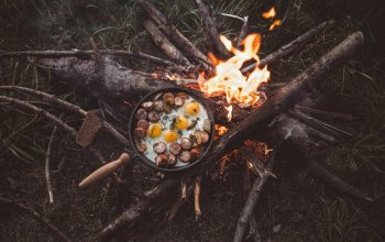 fried eggs,food,background,logs,натуре,bonfire,fire,pine cones,4k ultra hd,wallpaper,sticks,branches,Camping