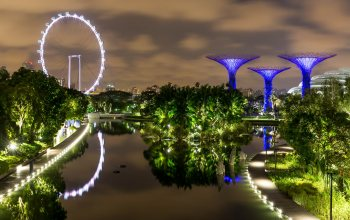 foto,пруд,Gardens by the Bay,Сингапу́р,Singapore