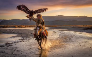 horse,eagle hunter,Mongolia,eagle,Ulgii