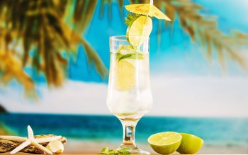 fruit,palm,summer,beach,lime,vacation,tropical,отдых,Mojito,мохито,каникулы,drink,лето,пляж