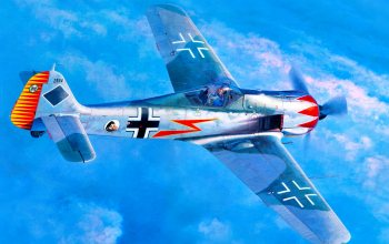 Major Hermann Graf,JGr 50,Fw.190,Focke-wulf,Fw.190A-5