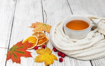 scarf,colorful,cup,шарф,листья,autumn,tea,чашка чая,leaves,maple,осен
